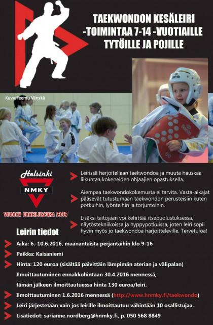taekwondon kesäleiri 2016