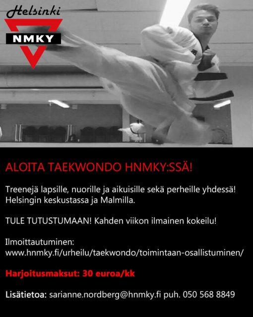 aloita taekwondo hnmkyssä-2