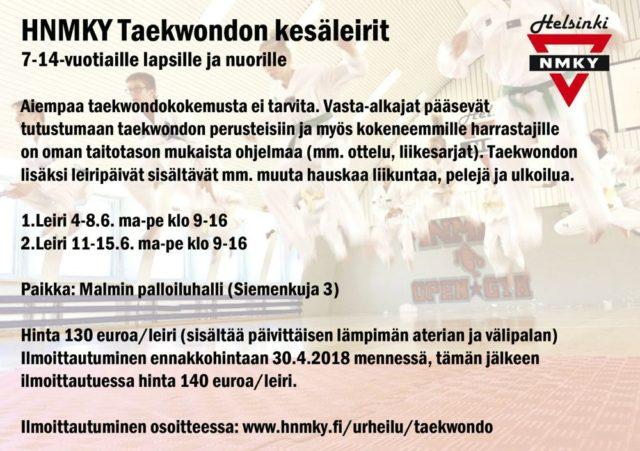 taekwondon kesäleiri 2018x